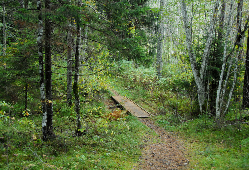 Kilingi-Nõmme forest trail